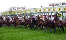 Horse Racing Betting Sites that refund Refuse to race bets