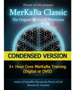 MerKaBa workshop condensed flower of life sacred geometry by Maureen St. Germain