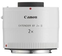 fotografare gli uccelli - Un extender 2x Canon