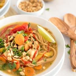 Instant Pot Rainbow Thai Soup
