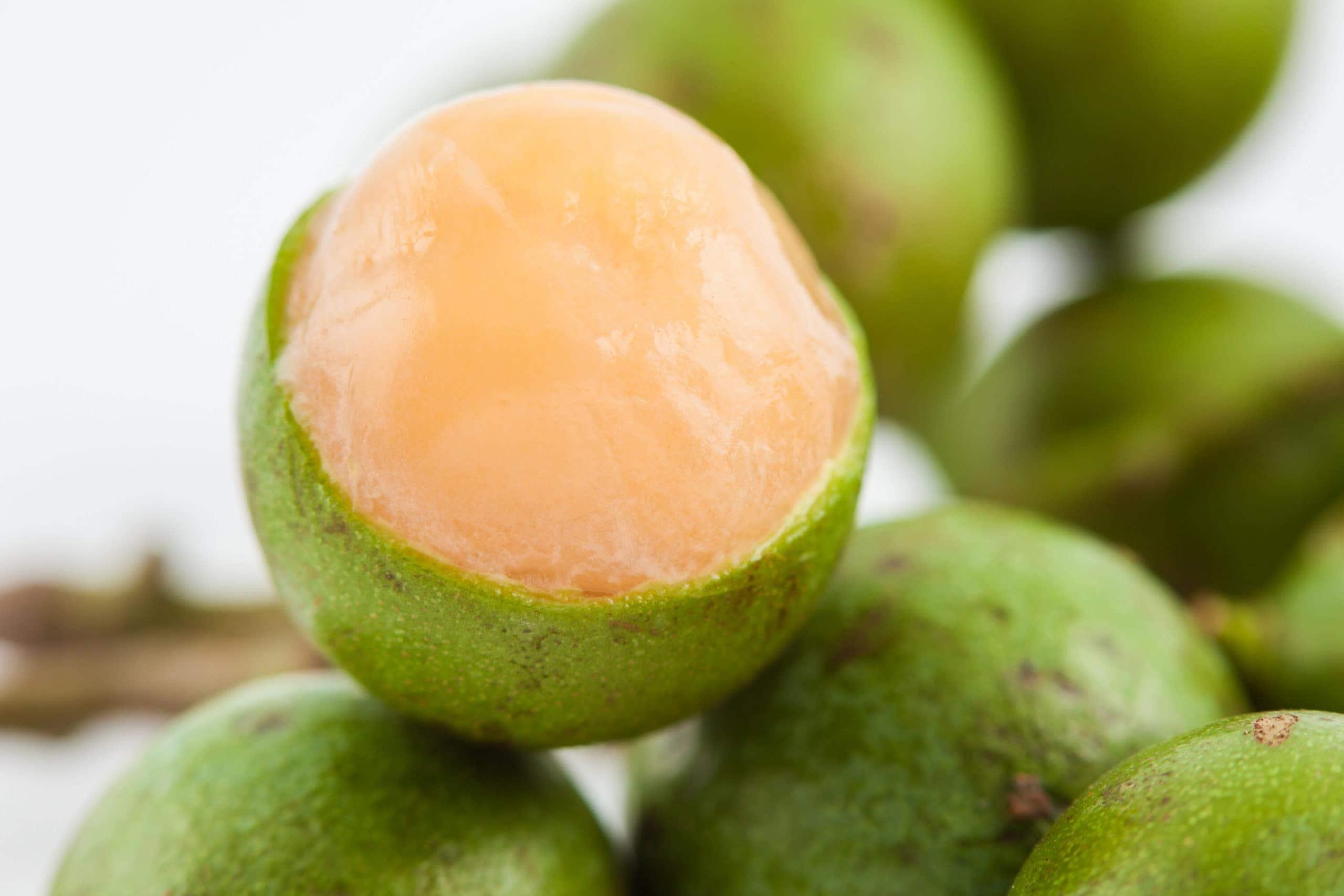 guinep fruit peeled close up