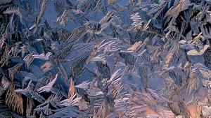 Winter art on window