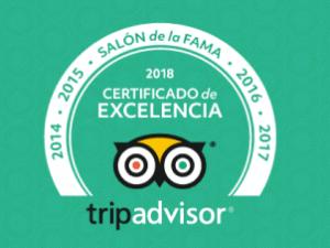 Restaurante cinquecento valencia tripadvisor hall of fame 2018