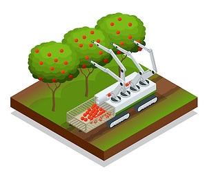 Robot Harvesting Fruit