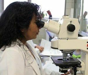 Scientific studies Nitric oxide