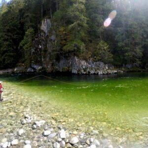 PITT RIVER FLY FISHING