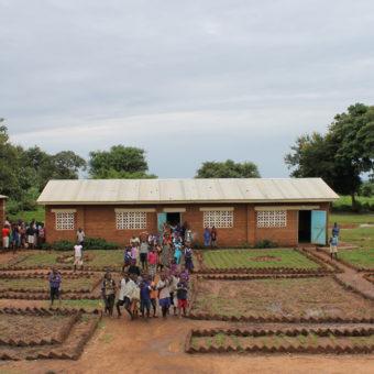 Malawi - landsbyskolen