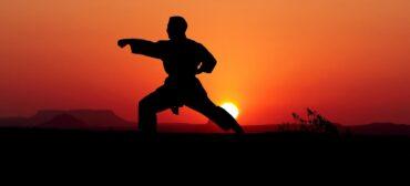 trening sportów walki