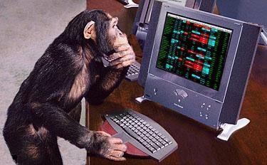 gestion-monetaria-trading-mono