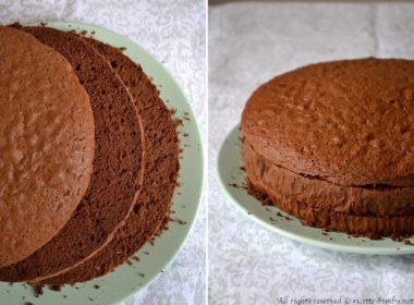 Pan di Spagna al cacao Bimby