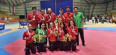 Photo of Con 12 medallas los taekwondistas casanareños triunfaron en los Juegos Nacionales 2019