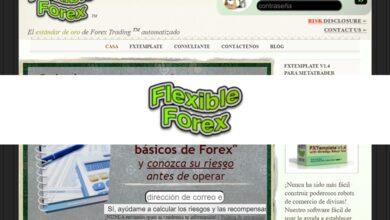 Flexible Forex revision
