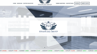Fly Financial Group revision