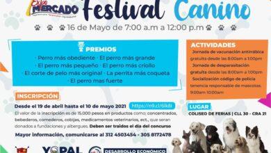 Photo of Inscripciones abiertas para festival canino