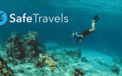"""SafeTravels founder """"makes money in his sleep"""" with Viator widgets and links"""