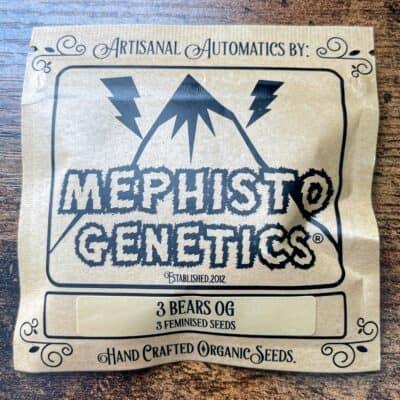 MEPHISTO_GENETICS_3BEARS_OG_3PK_LUSCIOUS_GENETICS