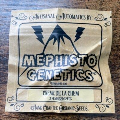 MEPHISTO_GENETICS_CREME_DE_LA_CHEM_3PK_LUSCIOUS_GENETICS
