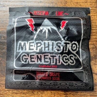 MEPHISTO_GENETICS_DOUBLE_GRAPE_3PK_LUSCIOUS_GENETICS