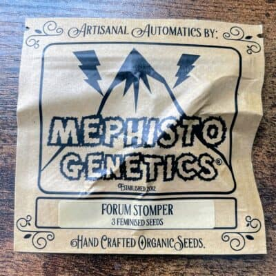MEPHISTO_GENETICS_FORUM_STOMPER_3PK_LUSCIOUS_GENETICS