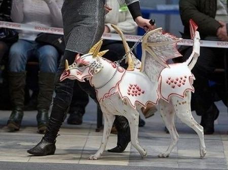Dragon Dog Halloween Costume