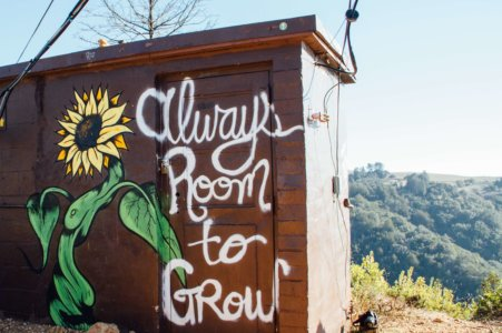 always-room-to-grow-painting-of-shed