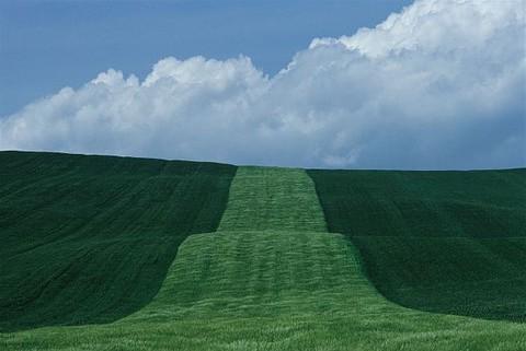 Franco Fontana - Landscape