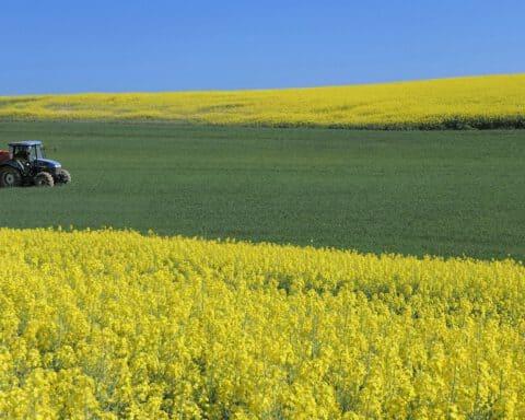 czy-rolnik-jest-przedsiebiorca-czy-konsumentem