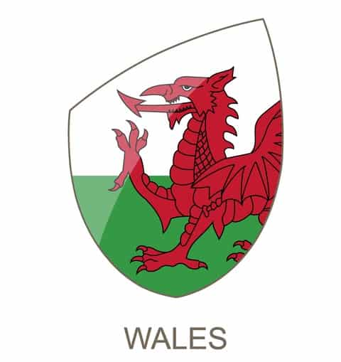 Wales Rugby 6 Nations Preview