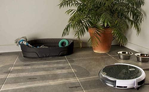 Amibot animal H2O aspirateur poil