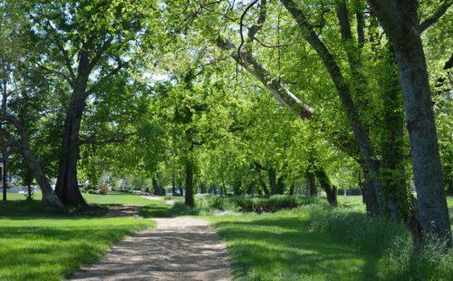 Parks & Trails | The Grove | Nashville Private Community