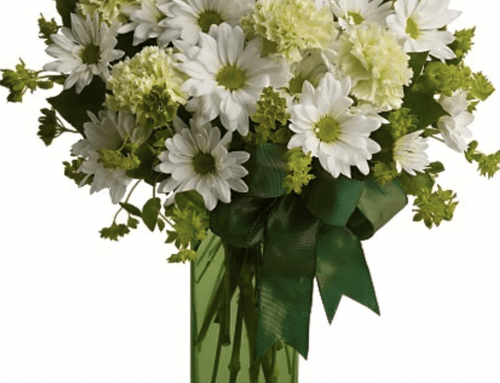 Shop Pugh's Selection of Flowers and Plants For St. Patrick's Day