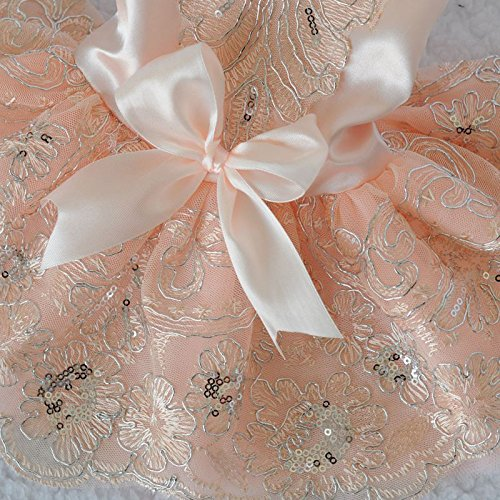 beautiful lace wedding dress for dog