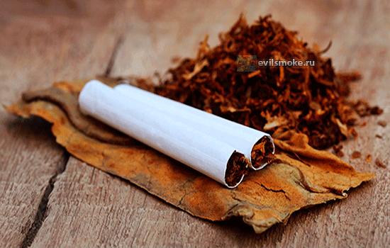 foto-kurenie-mohorki-sigaretyi-ili-mohorka