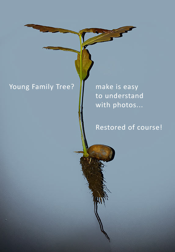 Smarten up your family tree with images