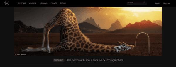 10 migliori alternative a flickr