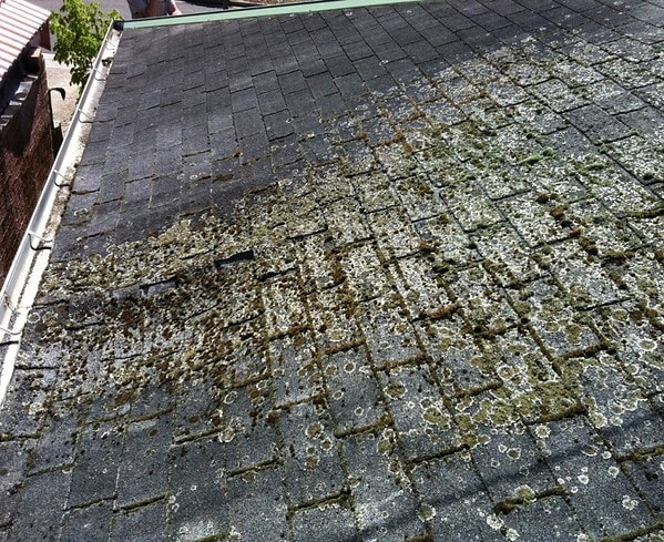 No ventilation of moisture trapped in roof space How not to install shingles