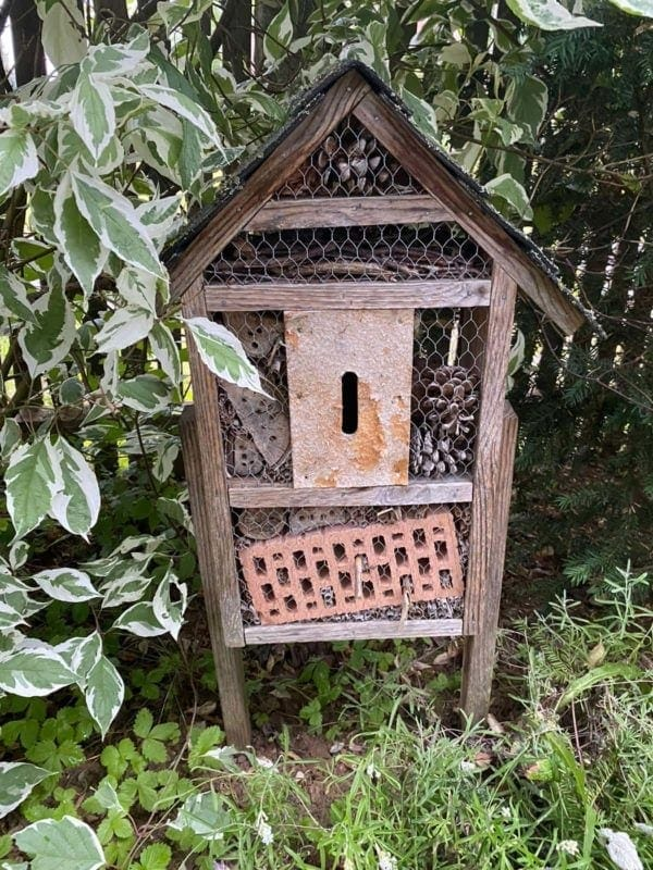 Insektenhotel unbrauchbar