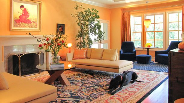 calypso orange wall and deep navy blue chair set in a formal living room