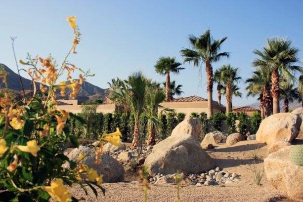 large desert in a backyard with gravel landscape idea