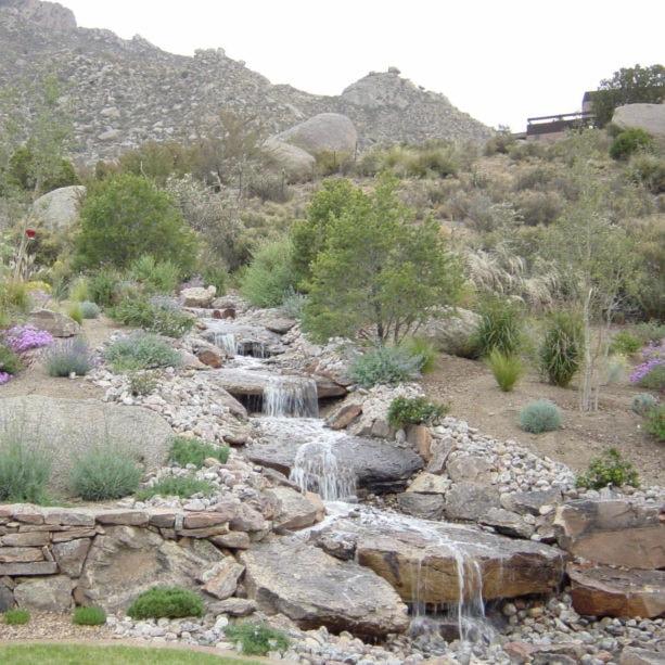 stone desert landscape in a full sun backyard idea