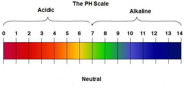 PH-Scale for healthier hair in dubai