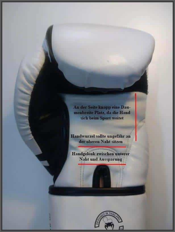 Passender Boxhandschuh Abmessungen