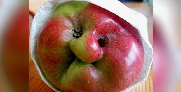 granny-face-shaped-apple
