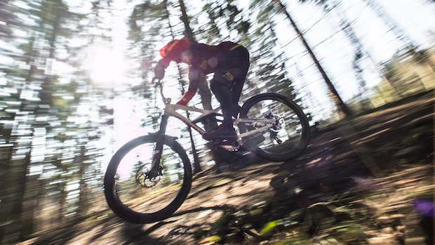 Downhill mountain biker blurred against a backdrop of thin trees
