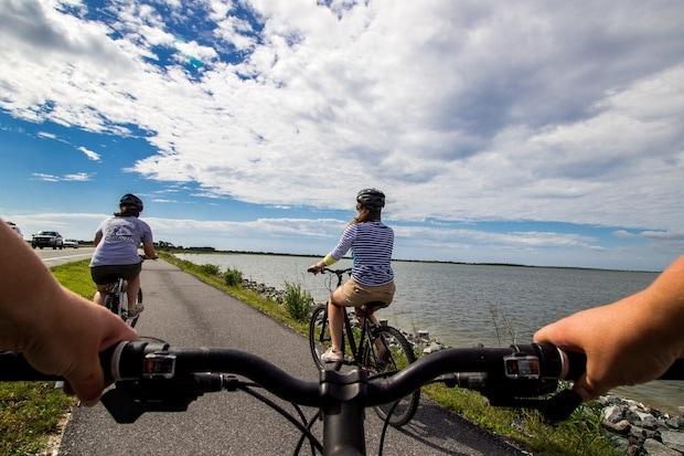 Cyclists on a sunny bike path