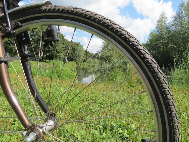 Closeup of a bike's tire in a grassy meadow