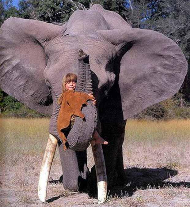 Tippi Degré and the elephant Abu