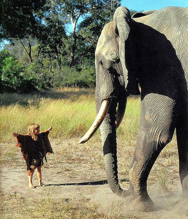 Tippi Degré and an elephant