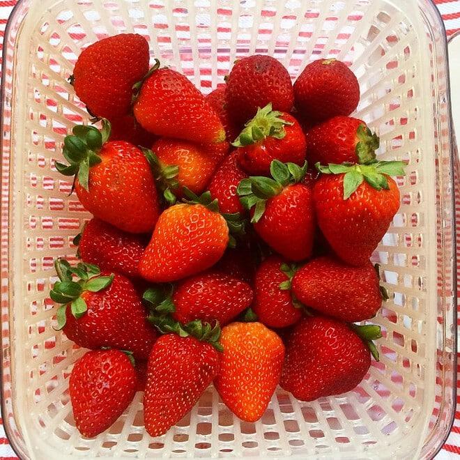 Strawberry Sugar Cookie Sandwich
