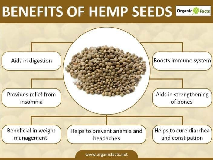 Eating Marijuana Seeds